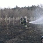 požiar v sade pri Lábe
